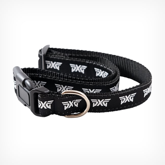 PXG Fur Baby Dog Collar Image 3